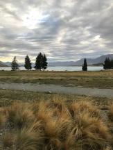 Auch im Hostel lassen sich die Kosten für Neuseeland gut im Zaun halten